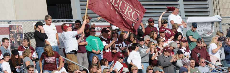 Students in Bleachers at Augsburg College Waving Flag
